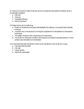 AP Bio Unit 2 Quiz-Vocab and Organelles