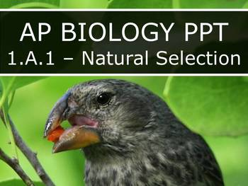 AP Biology (2015) - 1.A.1 - Natural Selection PowerPoint
