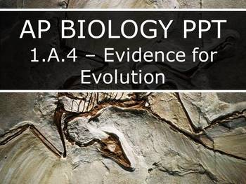 AP Biology (2015) - 1.A.4 - Evidence for Evolution PowerPoint