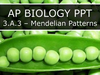 AP Biology (2015) - 3.A.3 - Mendelian Patterns PowerPoint