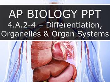 AP Biology (2015) - 4.A.2/3/4 - Differentiation, Organelles & Organ Systems PPT