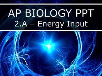 AP Biology (2015) - Unit 2.A - Energy & Matter PowerPoint