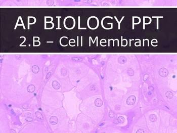 AP Biology (2015) - Unit 2.B - Cell Membrane PowerPoint