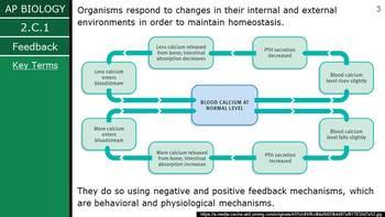 AP Biology (2015) - Unit 2.C - Feedback & Response PowerPoint