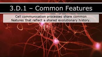 AP Biology (2015) - Unit 3.D - Cell Communication PPT