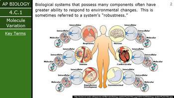AP Biology (2015) - Unit 4.C - Diversity PowerPoint
