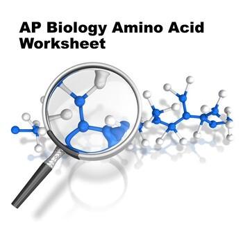 AP Biology Amino Acid Quiz & Answers