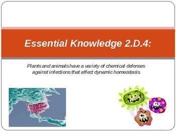 AP Biology Big Ideas 2.D.4 Immune Response