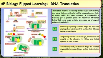 AP Biology Biological Molecules Summary Sheets