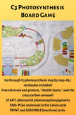 AP Biology: C3 Photosynthesis Board Game