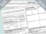 AP Biology: Carbohydrates Summary Worksheet