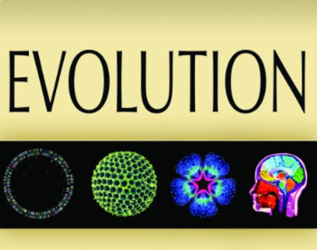 AP® Biology Chapter Evolution Powerpoint