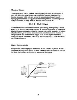 AP Biology Enzyme Catalysis Lab
