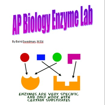 AP Biology Enzyme Lab