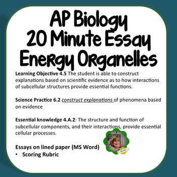 Ap Biology Essay Energy Transforming Organelles By Biou High  Ap Biology Essay Energy Transforming Organelles