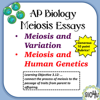 AP Biology Essays On Meiosis