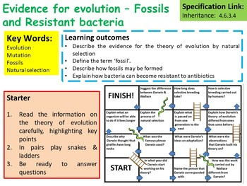 AP Biology Evidence for Evolution – Fossils and Resistant Bacteria Lesson
