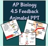AP Biology Feedback Loops Animated PowerPoint (Topic 4.5)