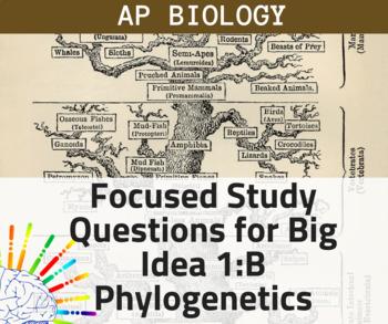 AP Biology Focused Review Study Questions: Big Idea 1:B Evolution