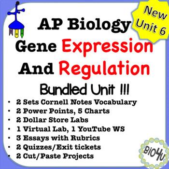 Ap biology teaching resources teachers pay teachers publicscrutiny Choice Image