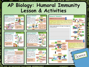 AP Biology Humoral Immunity Lesson & Activities