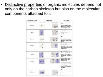 AP Biology Intro to BioMolecules
