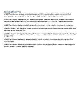 AP Biology Key Concept Summary- Respiratory System