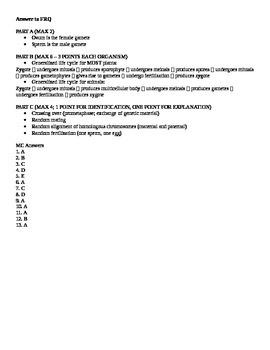 AP Biology Meiosis Quiz
