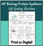 AP Biology Protein Synthesis Self-Grading Worksheet. Print
