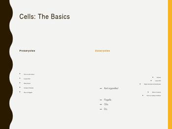 AP Biology Slides: The Cell