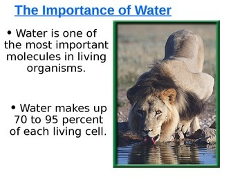 Structure of water molecule ppt inspirational ppt implicit.