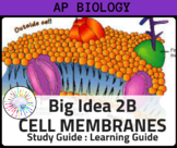 AP Biology Review Big Idea 2B Cell Membranes & Cell Transport