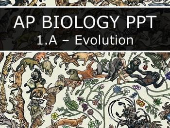 Advanced Placement (AP) Biology - Unit 1.A - Evolution PowerPoint