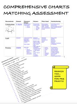 AP Biology Unit 1, Chemistry of Life Bundle