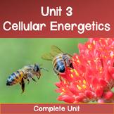 AP Biology Unit 3: Cellular Energetics COMPLETE UNIT--Dist