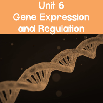 AP Biology Unit 6 Gene Expression and Regulation PowerPoint