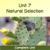 AP Biology Unit 7: Natural Selection COMPLETE UNIT Distance Learning Compatible
