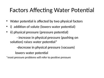 AP Biology Water Potential Powerpoint