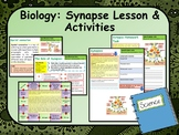 AP Biology:  What Happens at the Synapse?  Lesson & Activities
