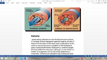 AP Biology Workbooks and Study Guides x 77 = Massive Bundle