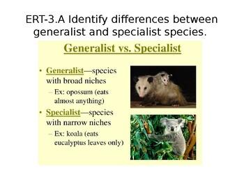 AP Enviro: Generalist, Specialist, R and K Selected Species