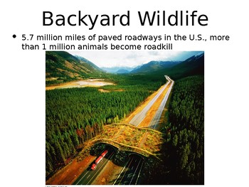 AP Environmental Science Conservation PowerPoint