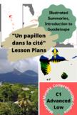 """AP French: """"Un papillon dans la cité"""" de Gisèle Pineau activities"""