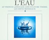 AP French Language and Culture project: les défis mondiaux
