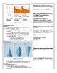 AP Human Geography Population Lecture Outlines and Notes