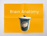 AP Psych or Psych Biopsychology Unit: Parts of the Brain PPT