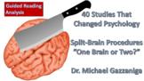 AP Psychology, 40 Studies That Changed Psychology, Split-B