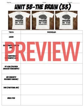 AP Psychology- Biological Bases of Behavior Definition Homework & Quiz (Unit 3)