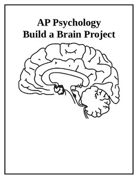 AP Psychology Build a Brain Project