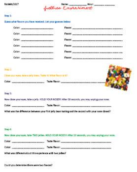 AP Psychology Bundle of Lessons, Video Guides, Handouts, Lectures, etc.